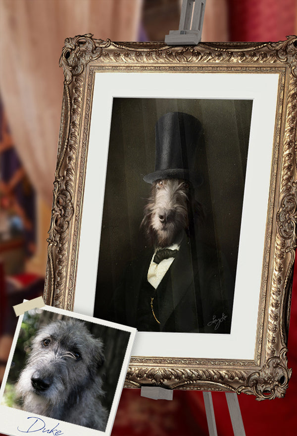 Lincoln Pet Portrait at Turner & Walker