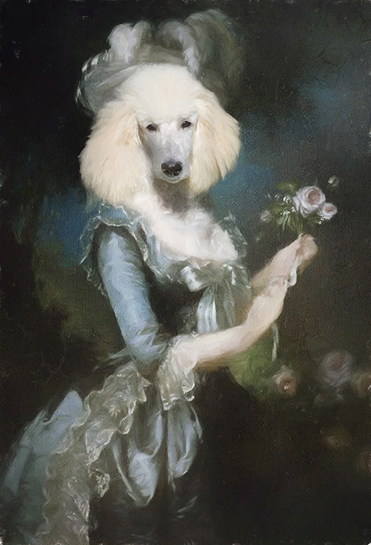 Marie Antionette Pet Portrait at Turner & Walker