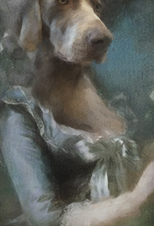 Misty Pet Portrait at Turner & Walker