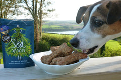 Nutritious seaweed dog biscuit recipe