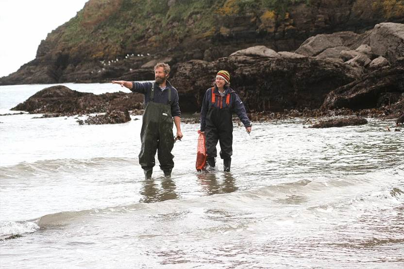 Tim and Kate harvesting edible seaweed