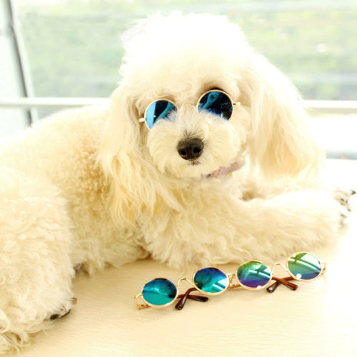Cute Pet Sunglasses Classic Retro