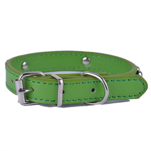 Fashionable Leather Dog Collars - Puppy Capital