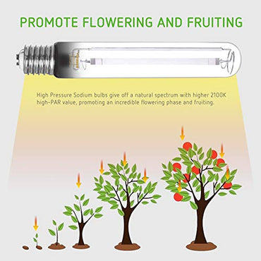VIVOSUN 600W HPS Grow Light Bulb - VIVOSUN