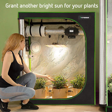 Grow Tent Complete Kit Basic Best for Beginners. Include VIVOSUN Grow Tent, Grow Light, Ventilation system like an inline fan, carbon filter, etc. Size 4x2, one of the best size that can fit in your room for Indoor Growing and Planting.