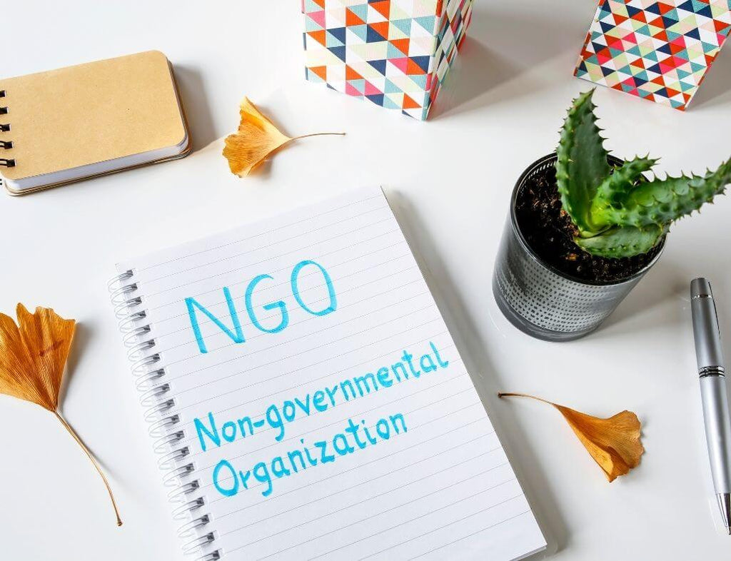 """a piece of paper with the abbreviation """"NGO"""" and the long version """"Non-governmental organization"""""""""""