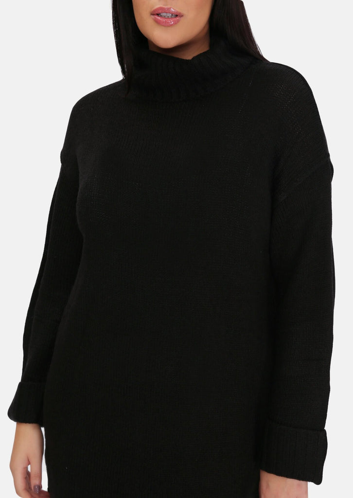 Pink Clove Black Roll Neck Knitted Dress view 5