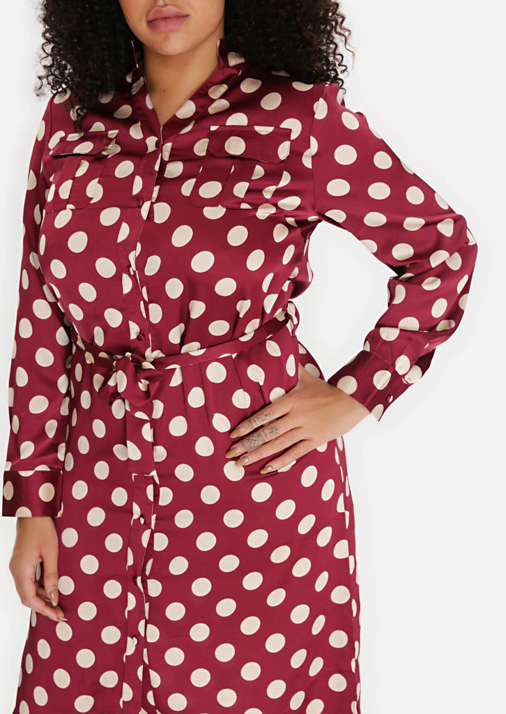 Pink Clove Wine Polka Dot Tie Belt Midi Dress view 5