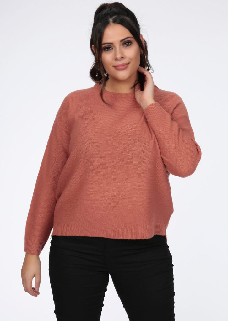 Plus Size Round Neck Rose Jumper