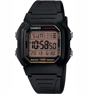 Casio W800HG-9AV Classic Watch