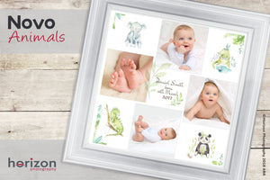 Novo - Animals Special Framed Product