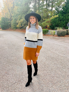 The Kate Turtleneck Stripe Dress
