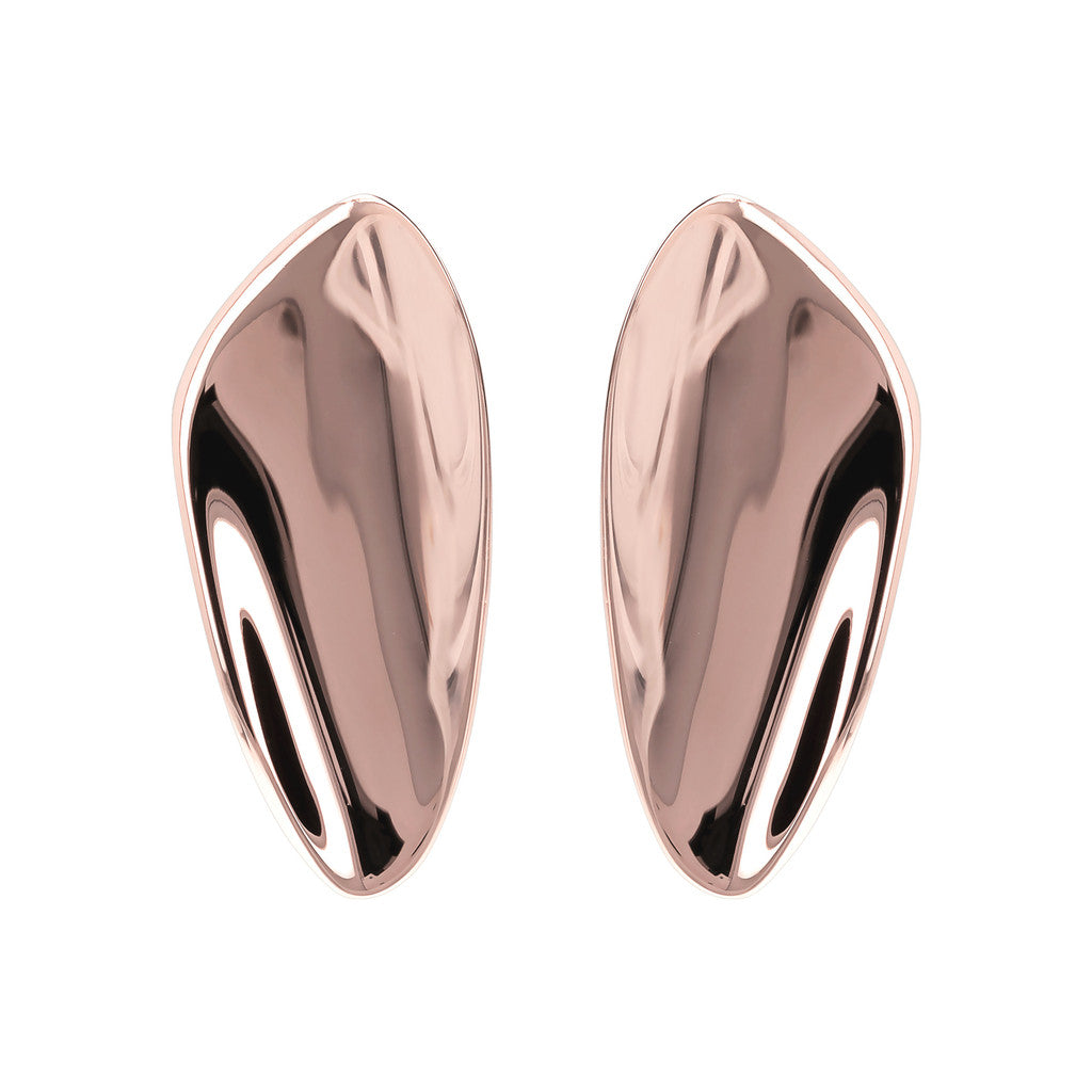 Glossy Design Earrings