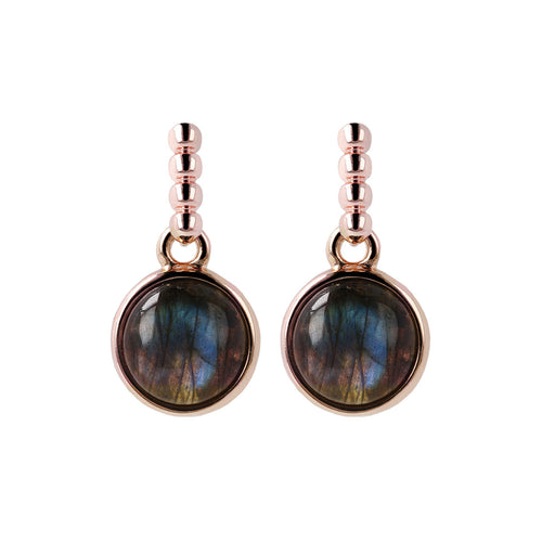 Two Tone Disc Dangle Earrings