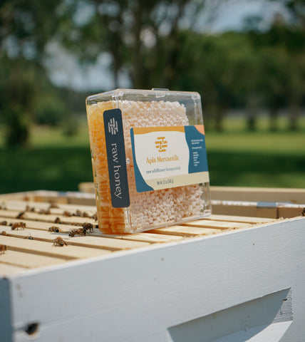 Packaged raw honeycomb resting on top of open beehive