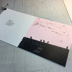 Arrhythmia LP (Limited Handprinted and Signed Edition)