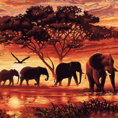 Elephant Safari Painting-By-Numbers Kit