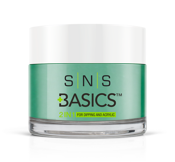 SNS Basics 1 + 1 Matching Dip Powder B015