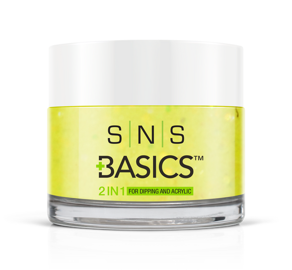 SNS Basics 1 + 1 Matching Dip Powder B011