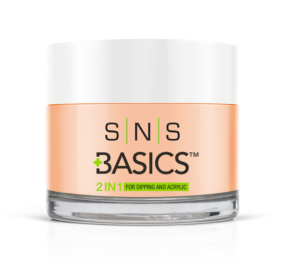 SNS Basics 1 + 1 Matching Dip Powder B017