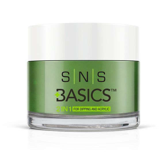 SNS Basics 1 + 1 Matching Dip Powder B024