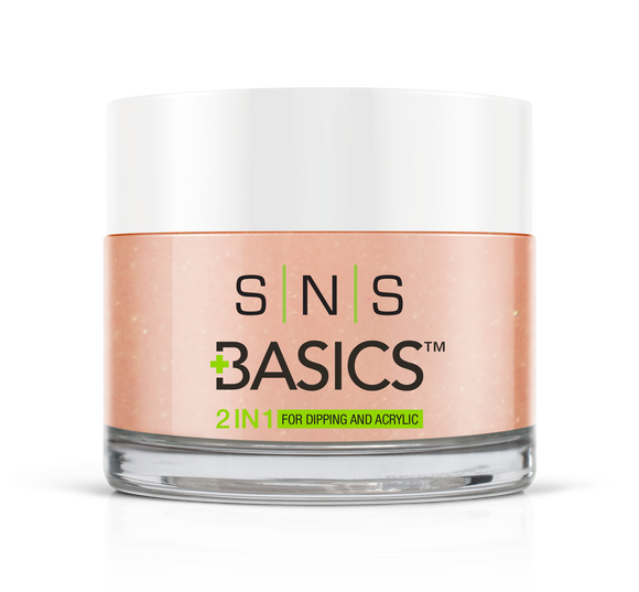 SNS Basics 1 + 1 Matching Dip Powder B009