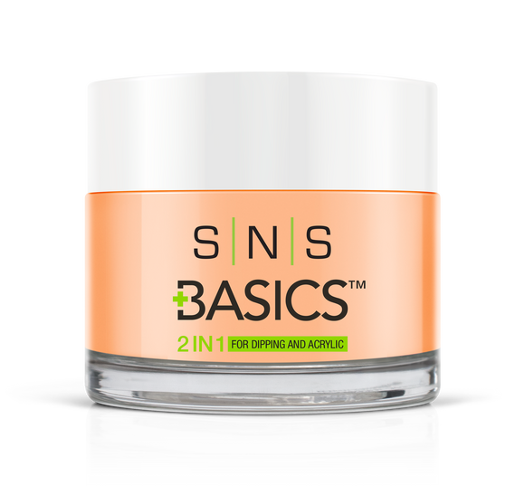 SNS Basics 1 + 1 Matching Dip Powder B022