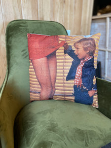 'Peeking' Cushion