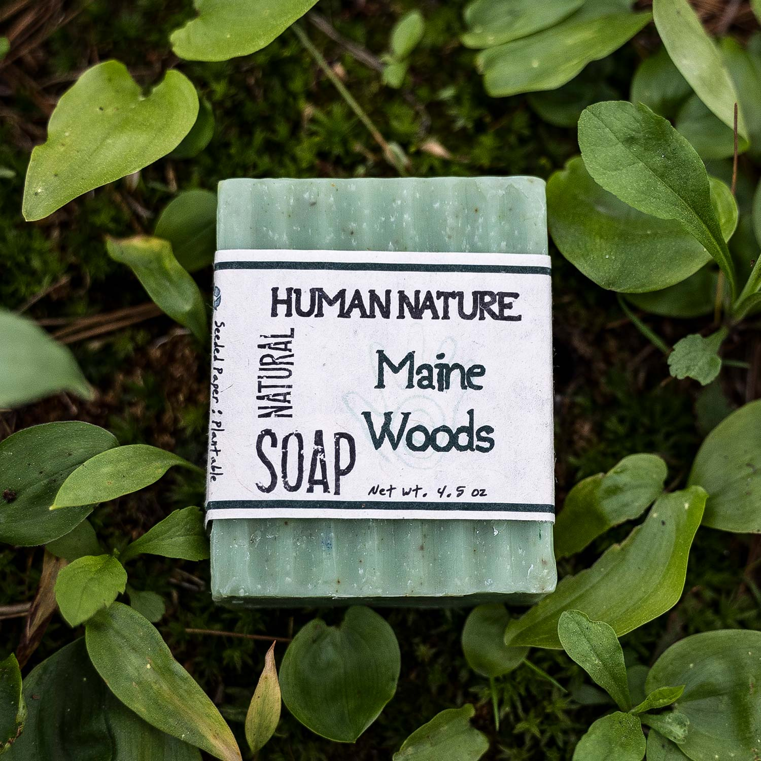 Maine Woods Soap