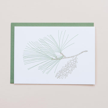 White Pine Greeting Card
