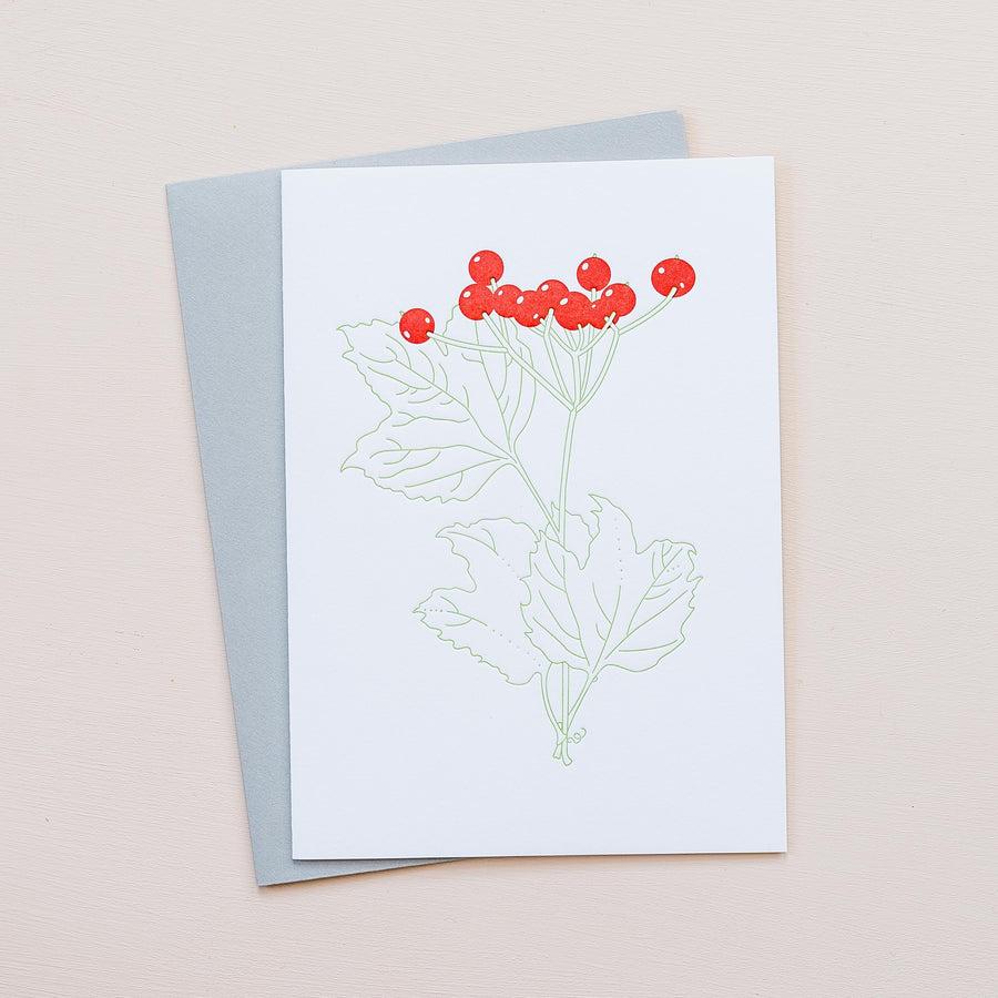 Highbush Cranberry Greeting Card