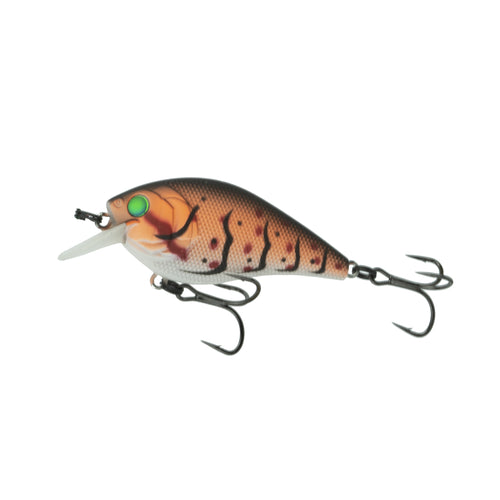 Crush 50S - Cajun Craw