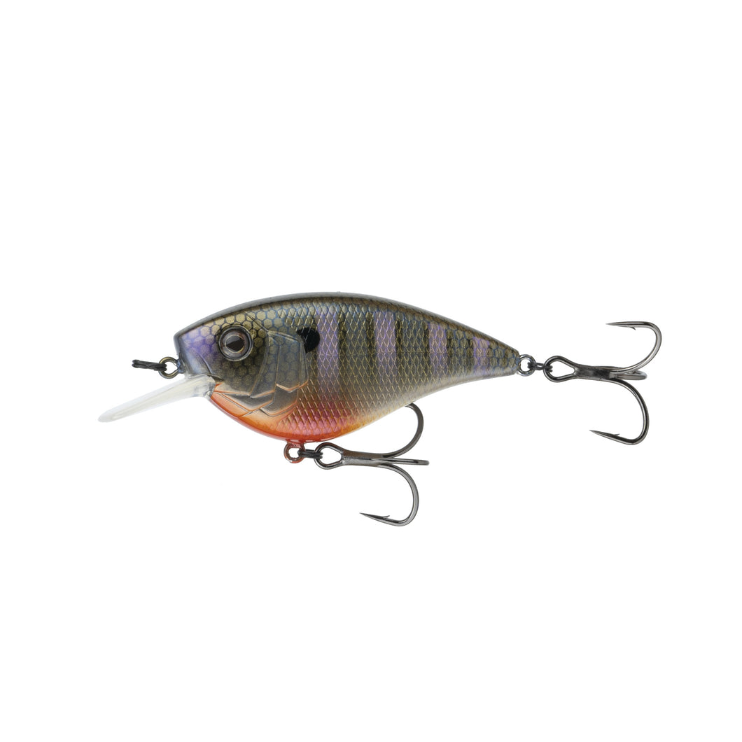 Crush Flat 75X - Bluegill Spawn