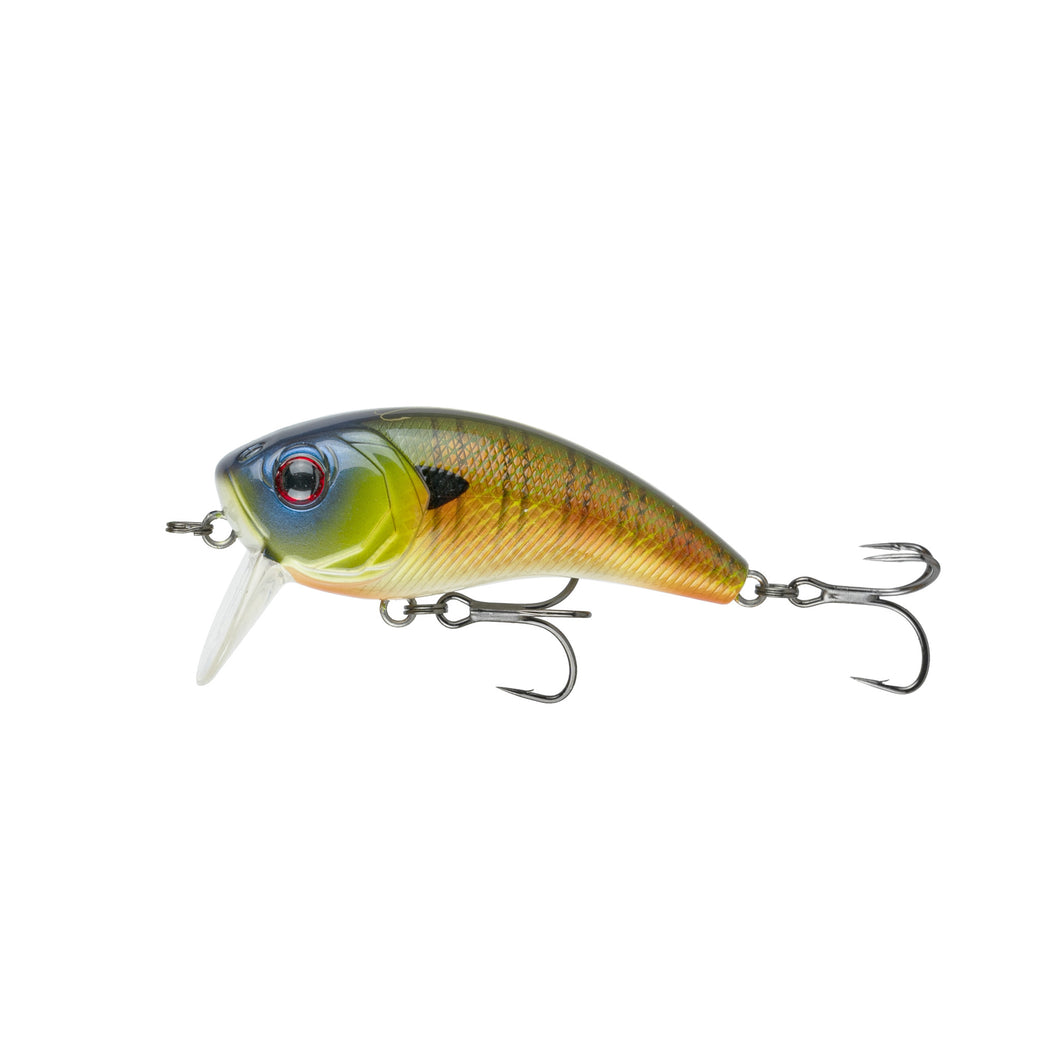 Movement 80WK - Custom Bluegill