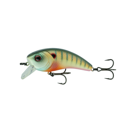 Movement 80X - Spring Bluegill