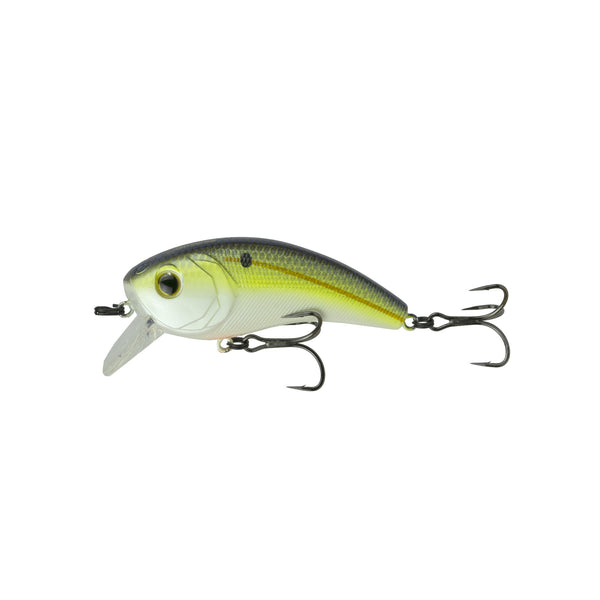 Movement 80X - Sexified Chartreuse Shad