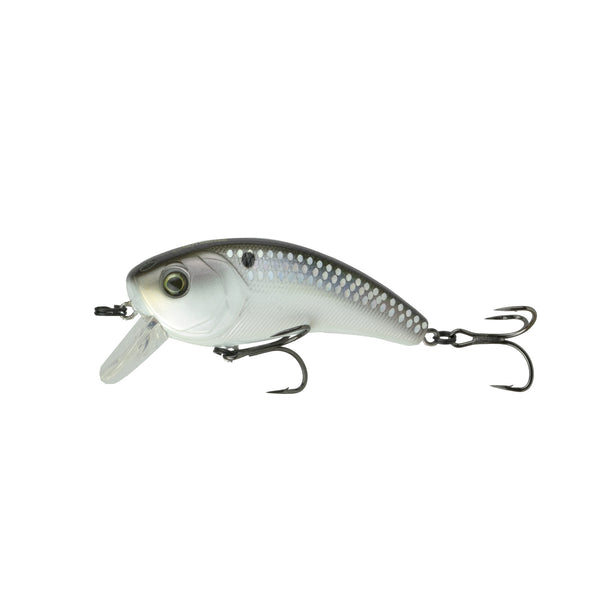 Movement 80X - Shad Scales