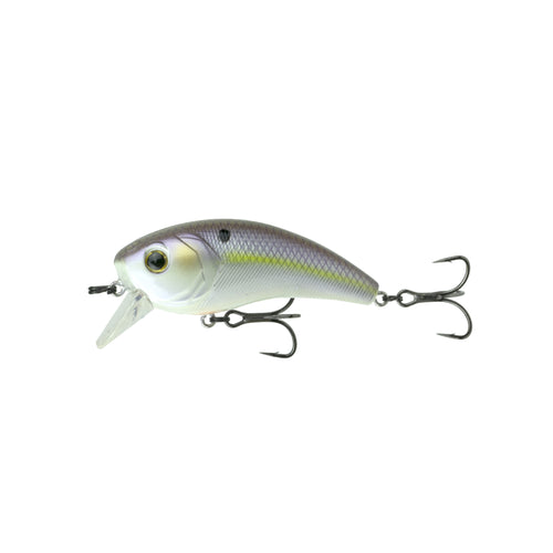 Movement 80X - Wild Shad