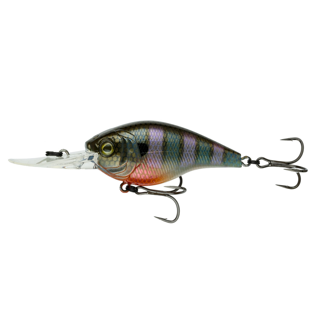 Cloud 9 - Bluegill Spawn