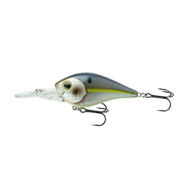 250MD - Chrome-Treuse Shad