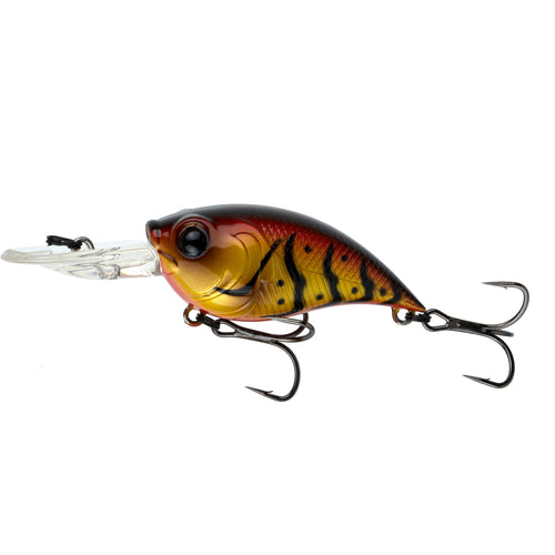 Curve 55 - Brown Eye Craw
