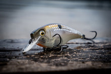 Cloud 9 MiniMag - Ghost Shad Scales