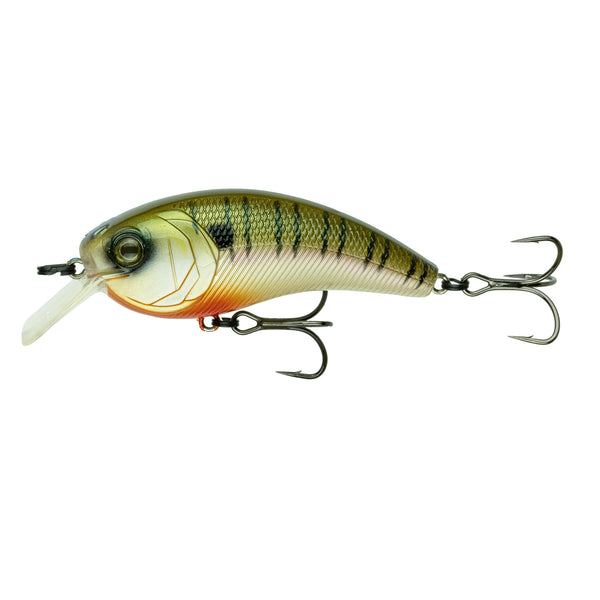 Movement L7 - 4K Bluegill