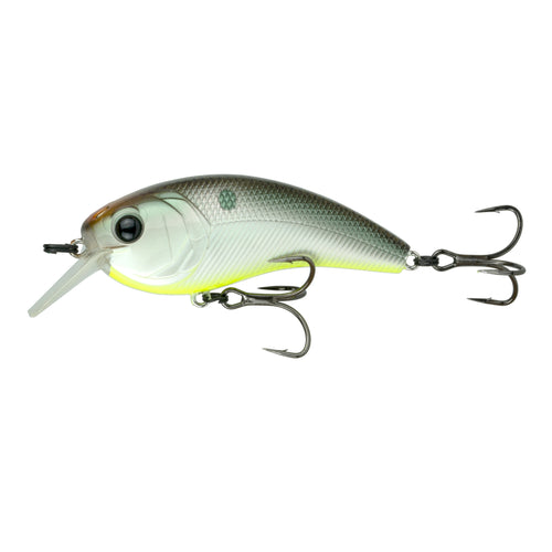 Movement L7 - Shad Treuse