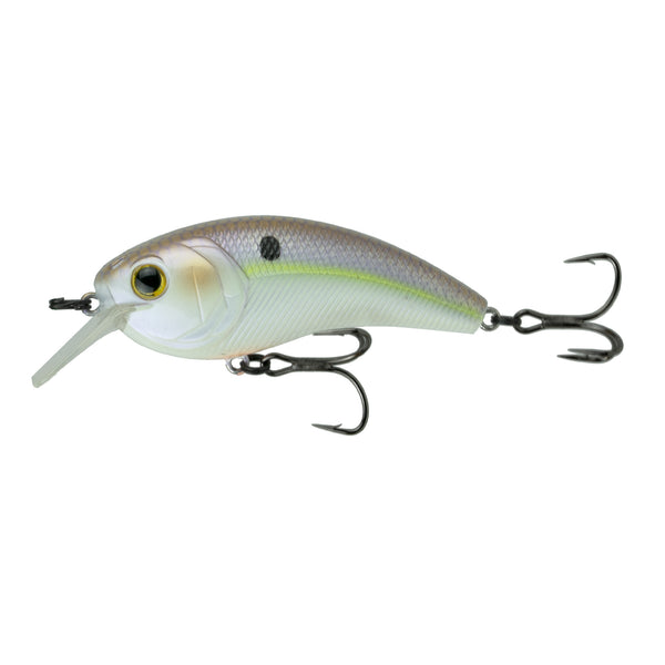 Movement L7 - Wild Shad