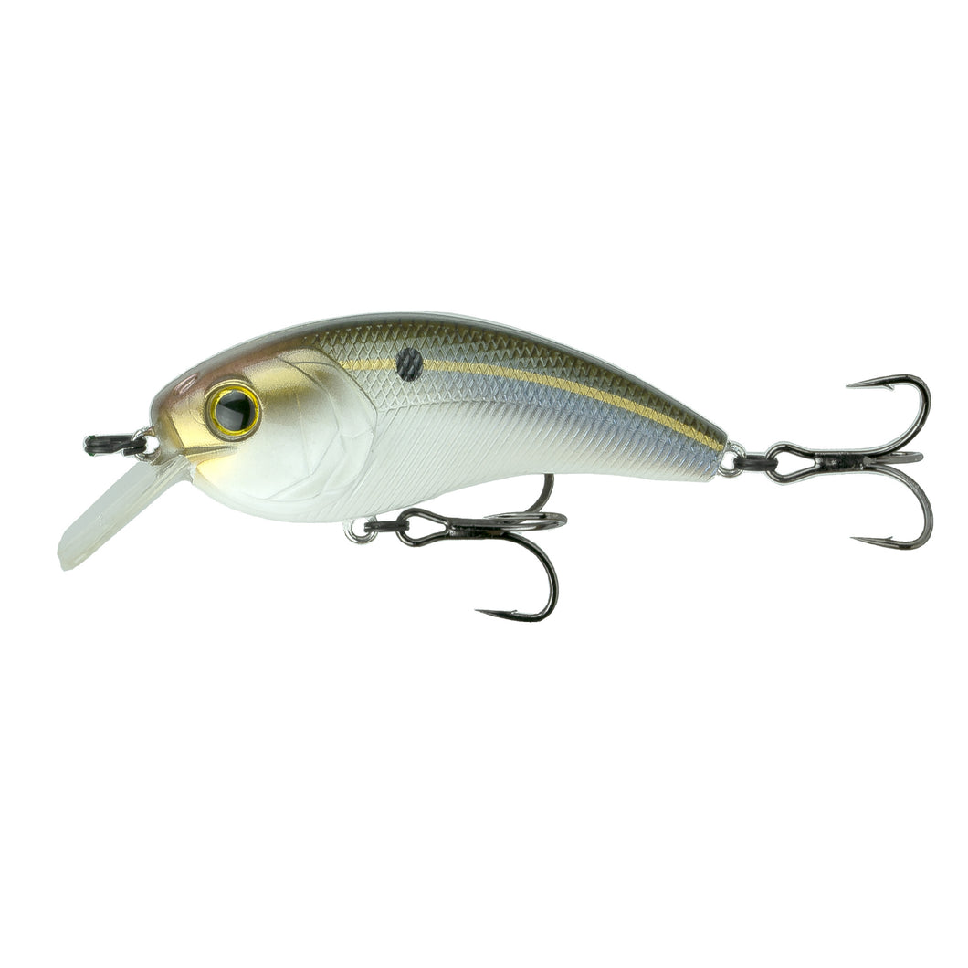 Movement L7 - Threadfin Shad