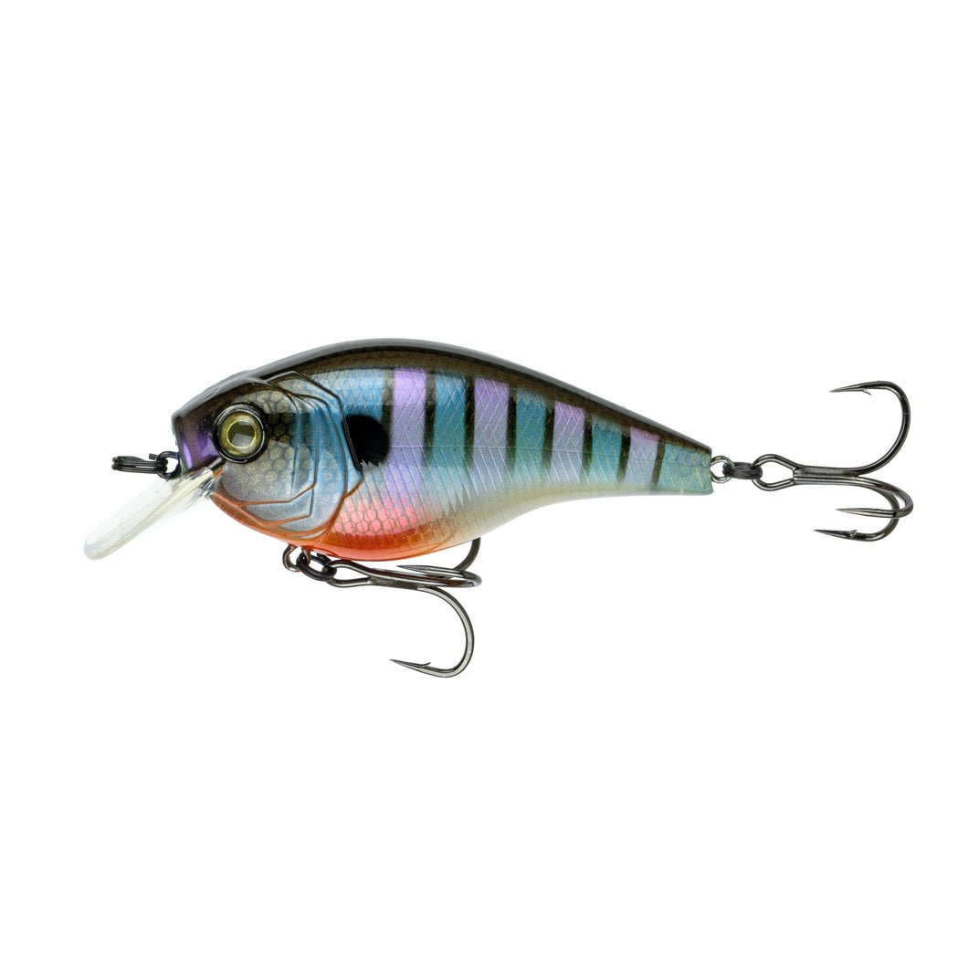 MiniMag SB - Bluegill Spawn