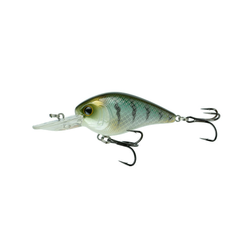 Crush Mini 25MD - Baby Crappie