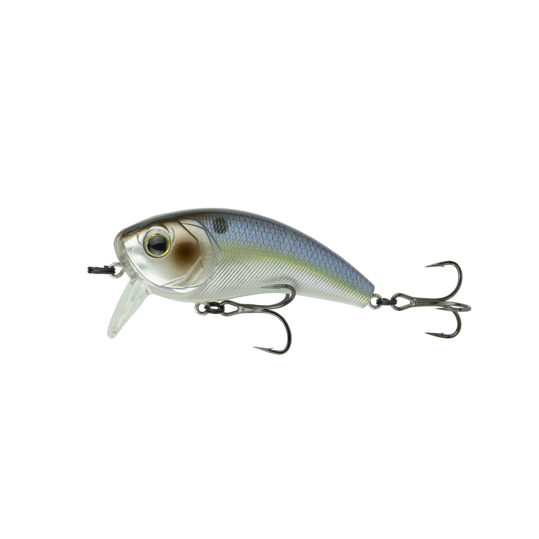 Movement 80WK - Chrome Threadfin