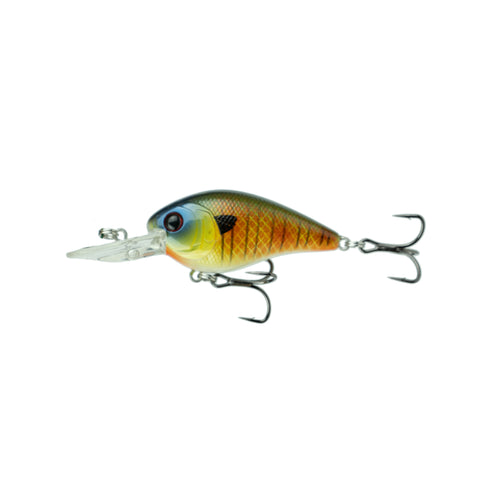 Crush Mini 25MD - Custom Bluegill